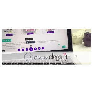 divi-01