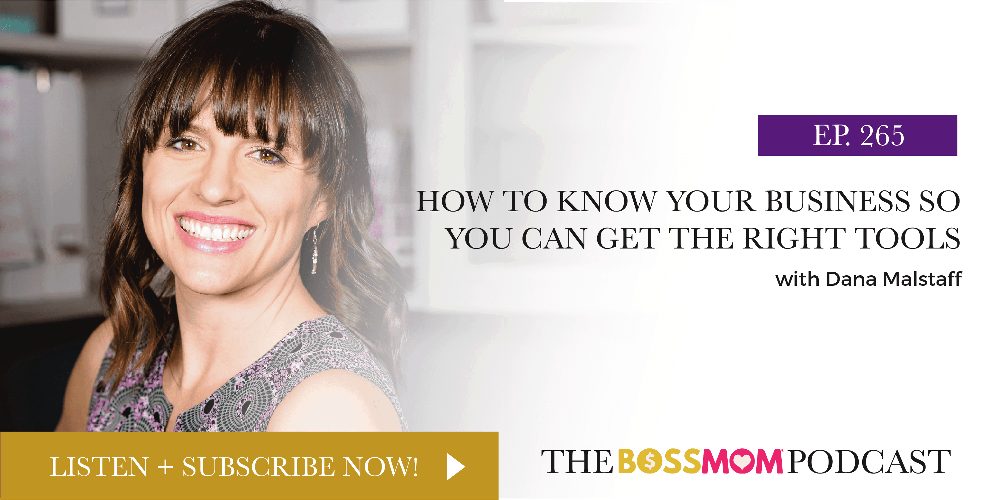 Episode 265: How to Know Your Business So You Can Get the Right Tools
